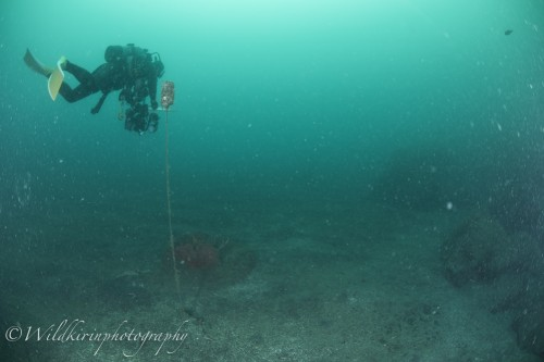 Ishibashi Underwater Complete_28