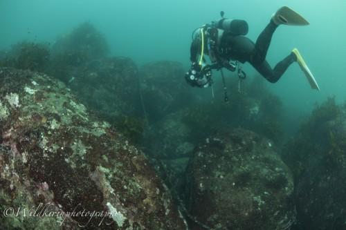 Ishibashi Underwater Complete_45