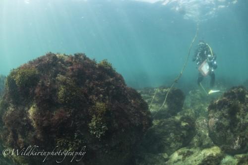 Ishibashi Underwater Complete_49