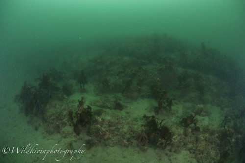 Jyougashima Underwater Complete_15