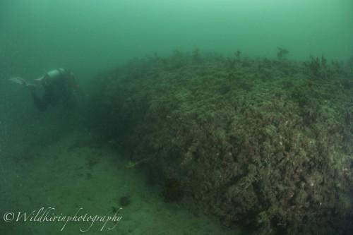 Jyougashima Underwater Complete_19