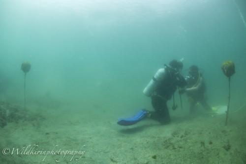 Jyougashima Underwater Complete_2