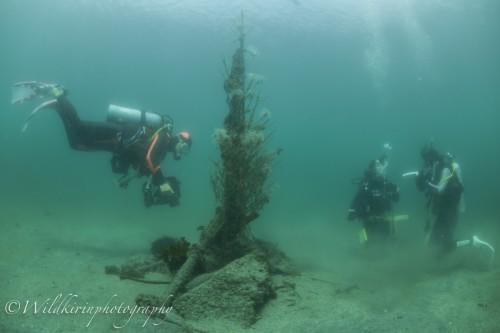 Jyougashima Underwater Complete_6