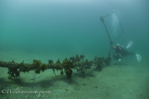 Jyougashima Underwater Complete_9