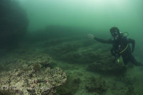 Miura Underwater Complete_19