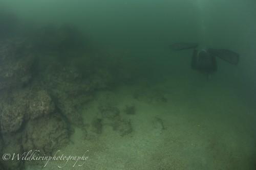 Miura Underwater Complete_27