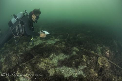 Miura Underwater Complete_34