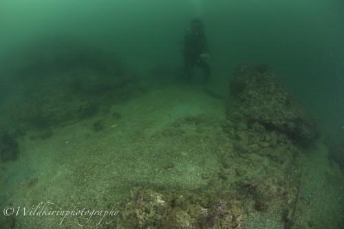 Miura Underwater Complete_9