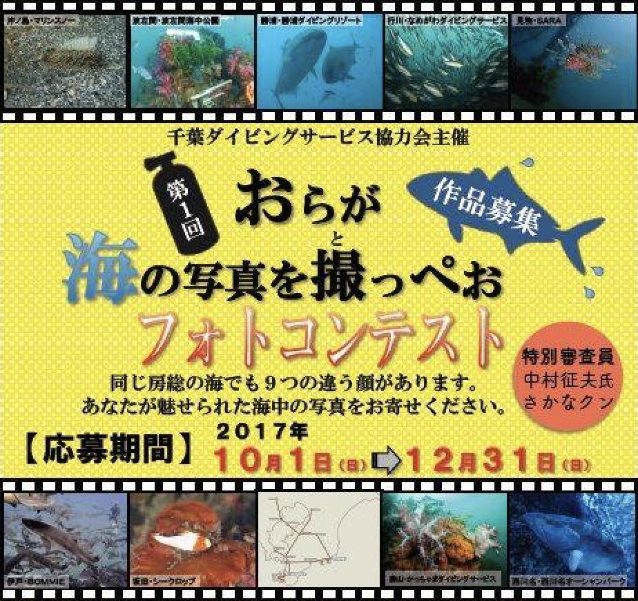まもなく募集開始! 第1回「おらが海の写真を撮っぺおフォトコンテスト」が開催