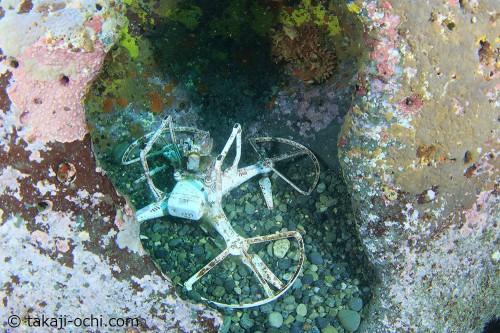 海底にひっそりとたたずんでたドローン