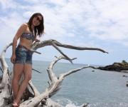 前の記事: 地球の生命があふれるハワイ島で、ビーチエントリーでイルカと泳
