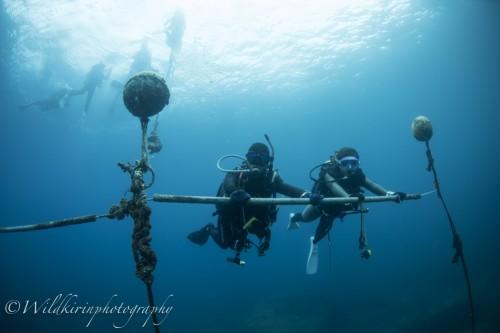Kumomi Underwater Complete_159