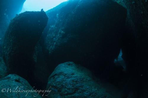 Kumomi Underwater Complete_30
