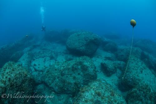 Kumomi Underwater Complete_5