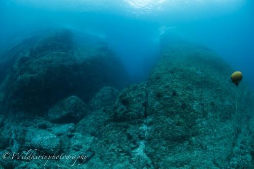 Kumomi Underwater Complete_9