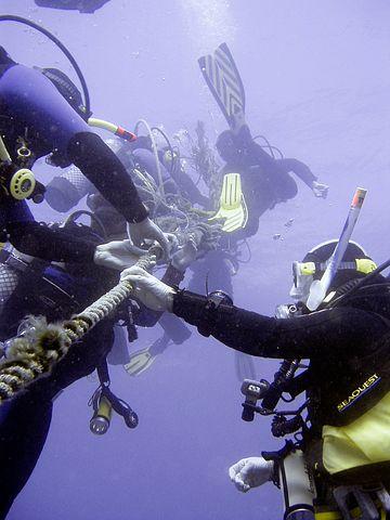diving-712632__480