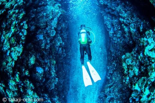 石垣島の宮良湾のキンメの根(撮影:越智 隆治)