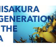 前の記事: 【参加者募集】もう一度タツノオトシゴの住める海に!〜江の島の