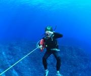 次の記事: 【ダイビング検証】ロタの海が世界一の透明度って本当?  ~メ