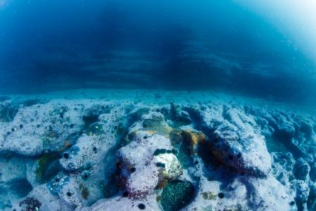 海中版「ザ・ウェーブ」とポットホールの境目が地層ではっきりと別れているのも興味深い