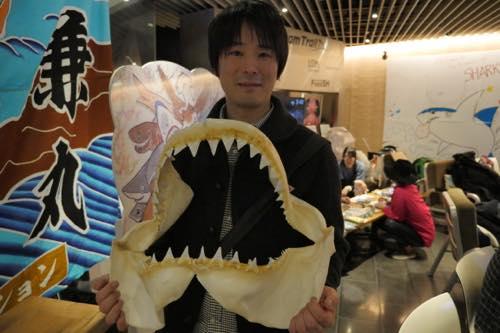 自宅でサメの標本や化石をたくさん集めているサメコレクターさん。