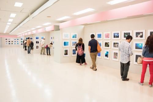 「地球の海フォトコンテスト2018」入賞作品展示会場。