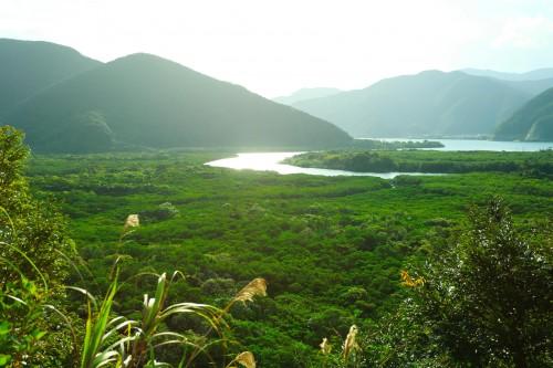 生まれたままの自然を有していることから「東洋のガラパコス」とも呼ばれている、奄美大島。