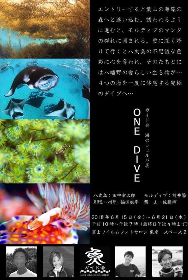 【告知】2018年6月15日(金)~ 6月21日(木)、ガイド会写真展・海のシェルパ展「ONE DIVE」が開催