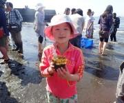次の記事: 【レポート】綺麗な海を取り戻そう! アマモ苗植え付け体験を実