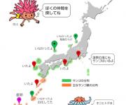 前の記事: みんなでつくる日本全国サンゴマップ 〜サンゴの情報を共有しよ