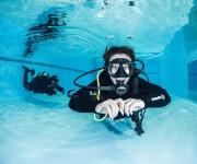 """前の記事: ホリゾンタル・トリム ~最も効率よく""""泳ぐ""""ことができる """""""