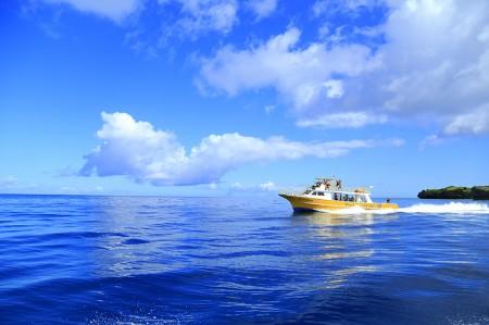 黄色い船が夢のオガン船だ。青い海に黄色がはえる