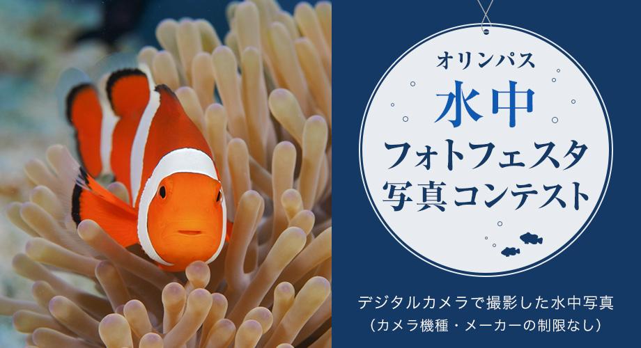 2018年7月6日(金)〜7月11日(水)、水中フォトフェスタが開催! @オリンパスプラザ東京
