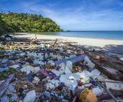 次の記事: 6/5は世界環境デー 地球規模で広がる海洋プラスチック汚染と