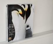 前の記事: 『世界で一番美しい ペンギン図鑑』出版記念、水口博也さんイン