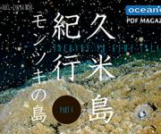 次の記事: ウェブマガジン「久米島紀行Part4 ーモンツキの島ー」が本