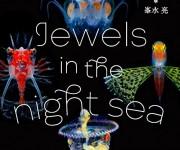 次の記事: 8月13日(月)、写真家・峯水亮さんの写真集『Jewels