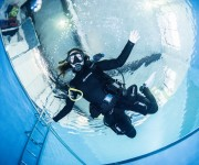 前の記事: ヘリコプターターン ~水中で180度の方向転換できるフィンキ