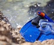 前の記事: 【ランキング】2018年8月に人気だった海やダイビングのニュ