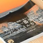 水口博也さんの「世界で一番美しいクジラ&イルカ図鑑」