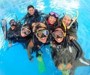 次の記事: ダイビングを本気で仕事にしたい人を、本気でサポート! ~SS