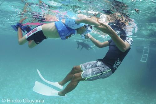 バハマのドルフィンスイム(撮影:Hiroko Okuyama)