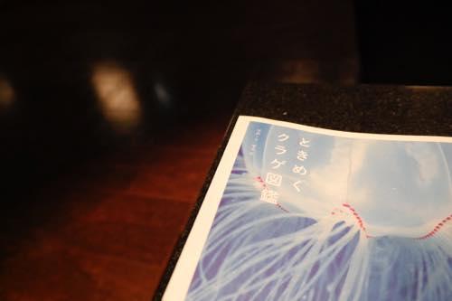 クラゲはあらゆる生物にとって「母」なんです 〜ときめくクラゲ図鑑出版記念、水中写真家・峯水亮さんインタビュー〜