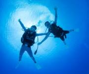 次の記事: 【ダイビング中・中性浮力編】トラブル対処ワンポイト・アドバイ