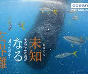 前の記事: webマガジン「未知なる玄界灘」本日公開!〜来シーズンのダイ