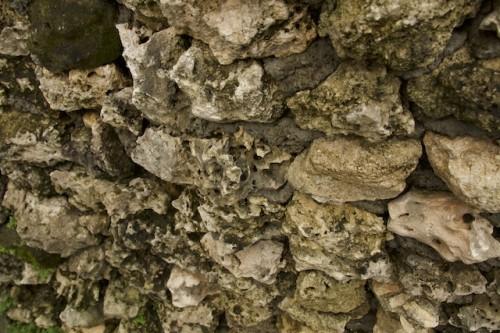 こちらもサンゴの石壁。