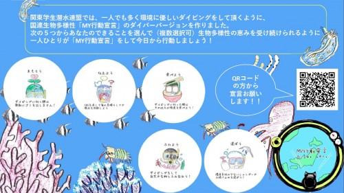 ダイバー版MY行動宣言_関東学生潜水連盟