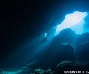 次の記事: 冬の宮古島ダイビングの魅力を徹底リサーチ!冬に潜りたいポイン