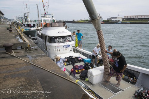 鹿児島県枕崎市の港を3日分の氷をびっしりと積み込み、出航する「栄真丸」
