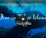 前の記事: 八丈島のプロモーション動画、もう見た!?自然写真家・関戸紀倫